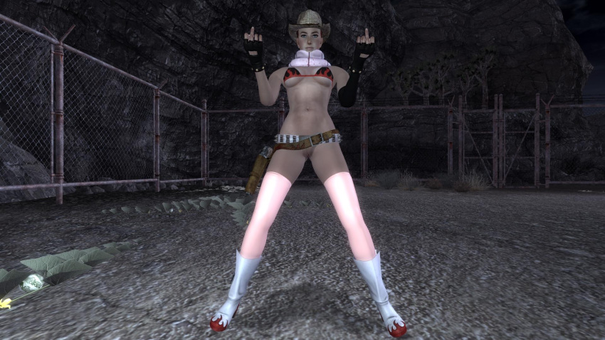 new fallout vegas Pictures of may from pokemon
